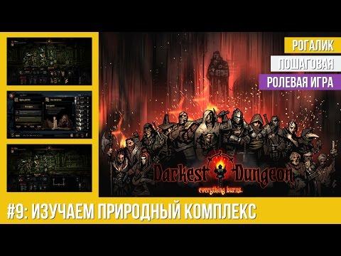 Прохождение Darkest Dungeon #9: Изучаем природный комплекс