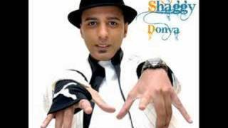 Arash Ft Shaggy Donya
