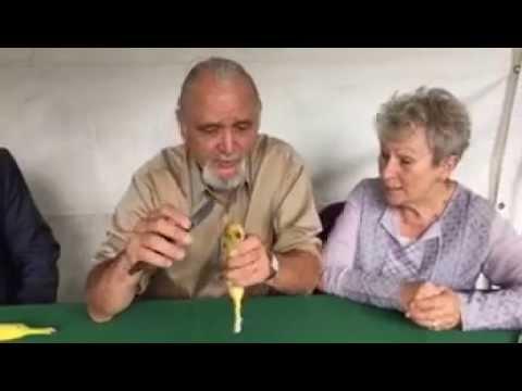 Jim May on how to make a talking banana