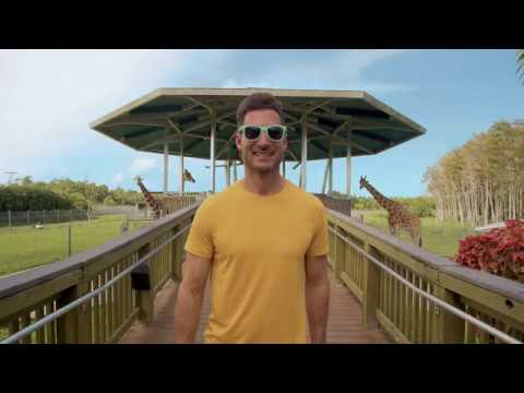 The Palm Beaches: Discover Florida's Cultural Capital®