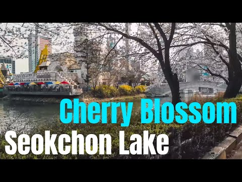 1 - Seokchon Lake(Lotte World Tower)  Cherry Blossom Festival 2018 (석촌호수-공원 벚꽃축제) in Seoul Korea