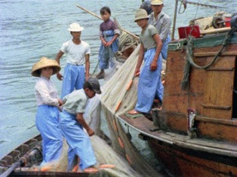 China Coast Fishing - PREVIEW