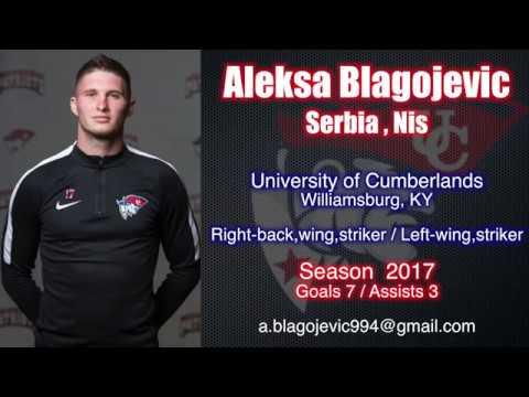 Aleksa Blagojevic - Men's Soccer Highlights 2017