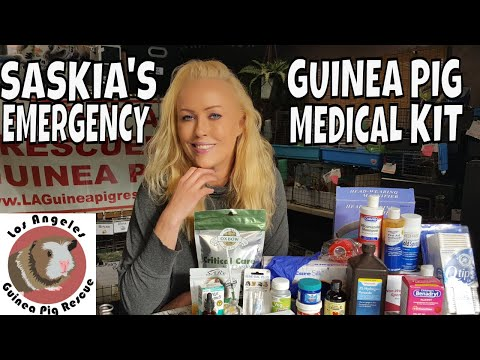 Guinea Pig Medicine Cabinet and Emergency Kit by Saskia