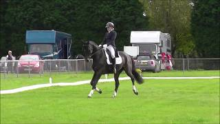 SOE International CIC** 2nd