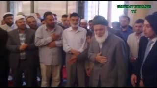 Seyyid Muhammed Ali - Biat