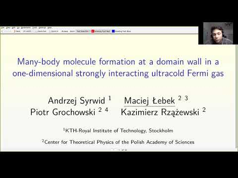 """Maciej Łebek """"Many-body molecule formation at a domain wall in a one-dimensional strongly..."""""""