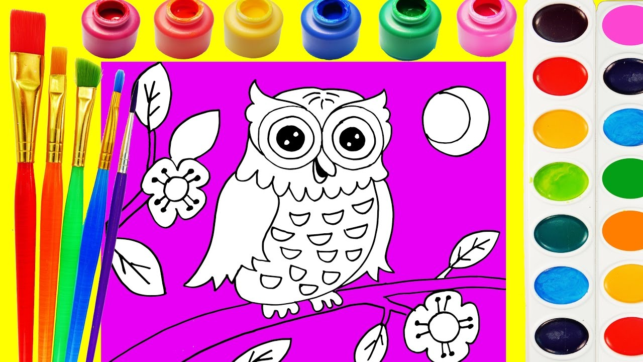 owl coloring page for kids to learn to color and paint youtube