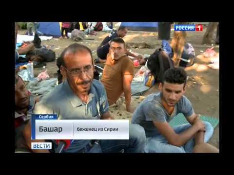 В МАКЕДОНИЮ НАХЛЫНУЛИ ЭМИГРАНТЫ | Самые последние новости Украины, России сегодня 24.08.2015