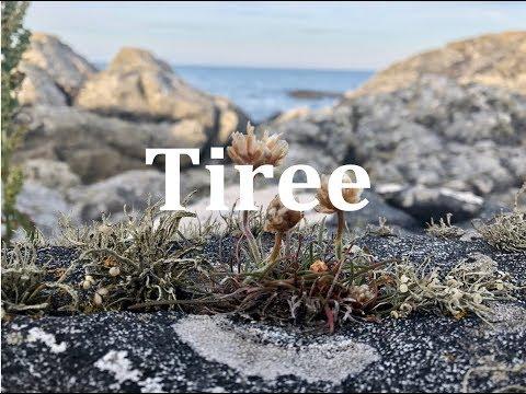 Isle of Tiree 2018