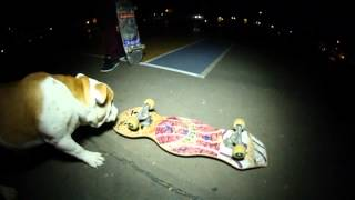 Quartersnacks - Afters Thumbnail