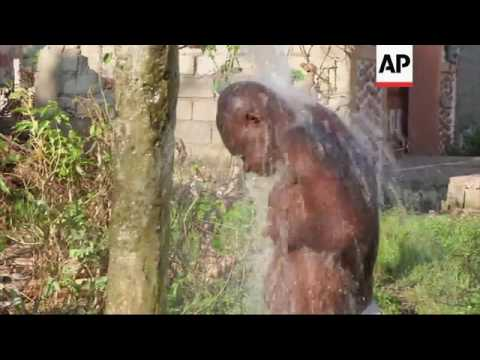 ONLY ON AP Clean water scarce in southern Haiti