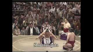Grand Sumo: The Beauty of Tradition