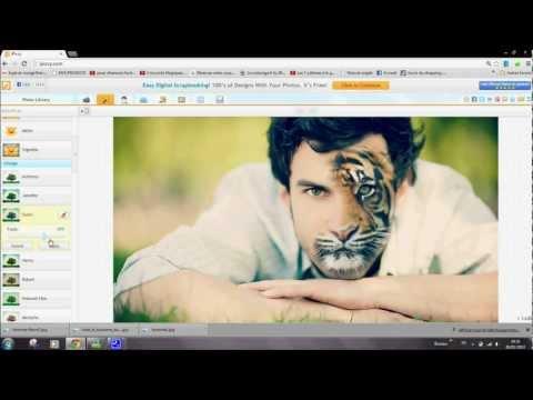 Montage Ipiccy - Tête de tigre #Tutoriel