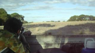 target shooting on a hunting trip with a .22 remington