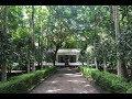 Thiruvaavaniraavu Video Song | Jacobinte Swargarajyam | whitehouse Kids |  Ambooken |  Onam 2017