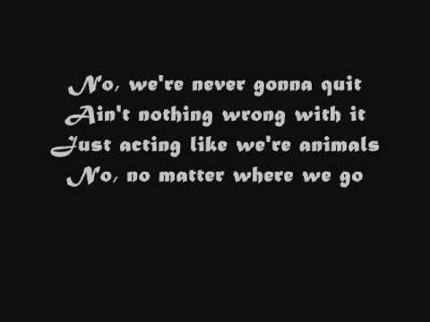 animals lyrics - photo #35