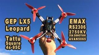 GEP LX5 Leopard Emax RS2306 2750KV 35A AVAN-R5065 Tattu Square 4S Quad