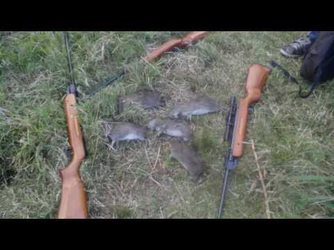 Fotos de pesca y caza con amigos