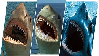 Jaws Evolution in Movies and Cartoons...