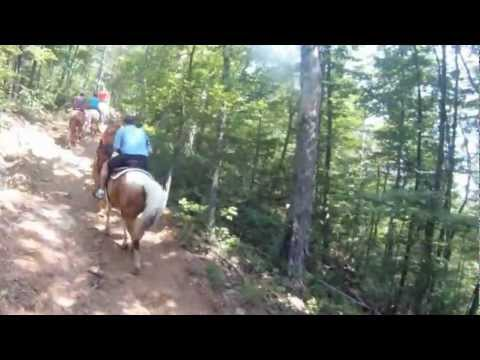 Next to Heaven Horseback Riding in the Great Smoky Mountains!