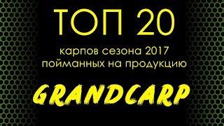 ТОП 20 карпов сезона 2017, пойманных на продукцию Grandcarp
