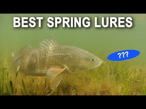 Spring Inshore Fishing: Top 2 Lures For Redfish, Trout & Snook