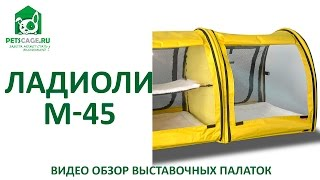 Ладиоли М-45 - видеообзор выставочной палатки тройной.