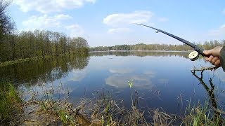 Ловля поплавочной удочкой весной, секреты ловли.