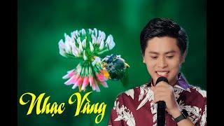 Nhạc Sống Trữ Tình sôi Động - Lk Áo Mới Cà Mau , Tôi Vẫn Nhớ || Nguyễn Thành Viên