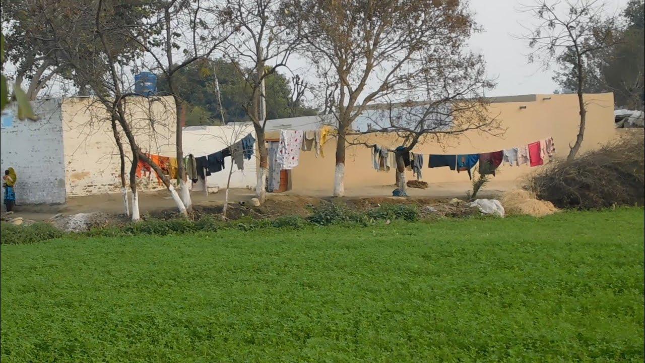 Village Life of Pakistan