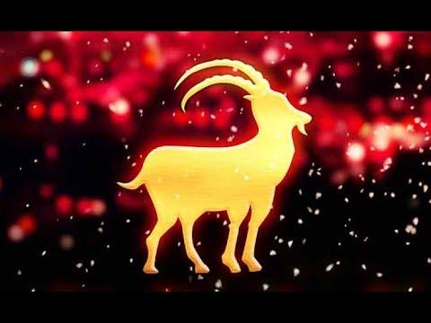 Год Козы (Овцы) - описание и характеристика. Совместимость знаков