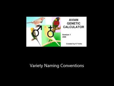 Avian Genetic Calculator - Variety Naming Conventions