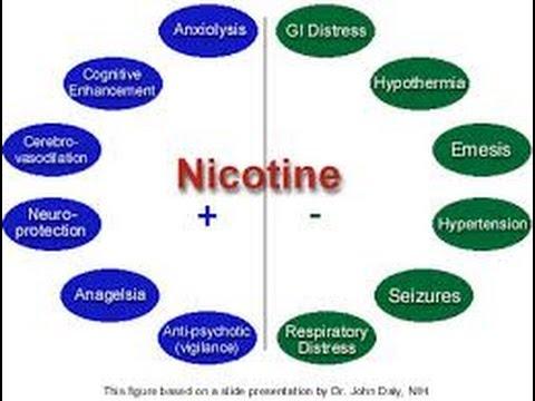 Nicotine Side Effects Youtube