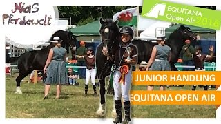 EQUITANA: Junior Handling mit Action ✮ Teil 3/3