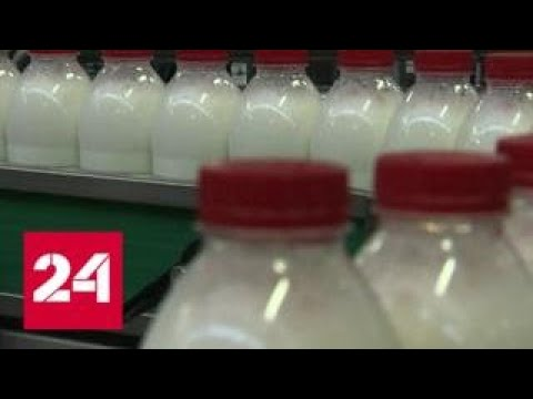Четверть молока, треть сметаны и 60 процентов творога в России опасны для здоровья - Россия 24