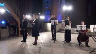 Ziemassvētku ieskaņas koncerts SVĒTKU PRIEKAM 17.12.2013 - 00702