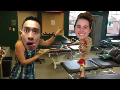 KCU Anatomy Fellows 2017 2018 mp4