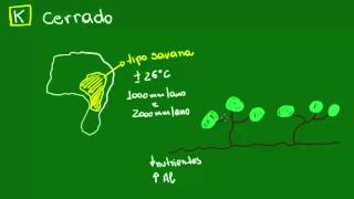 Cerrado - Ecologia - Biologia