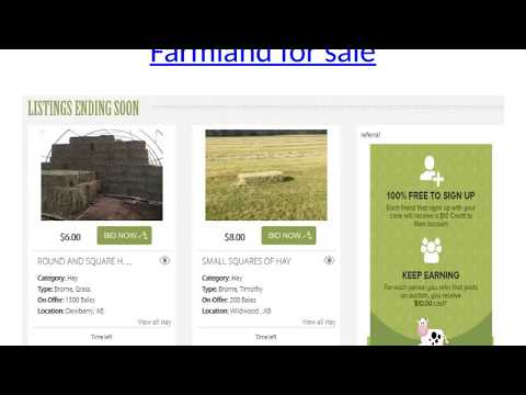 Farmland for sale, Cattle market, Cattle Auctions, Livestock Auction, Cattle for Sale