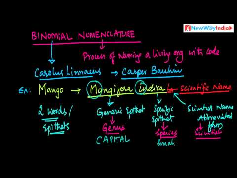 CBSE Class 11 - Biology Lessons - 004 - Binomial Nomenclature And Rules for Nomenclature