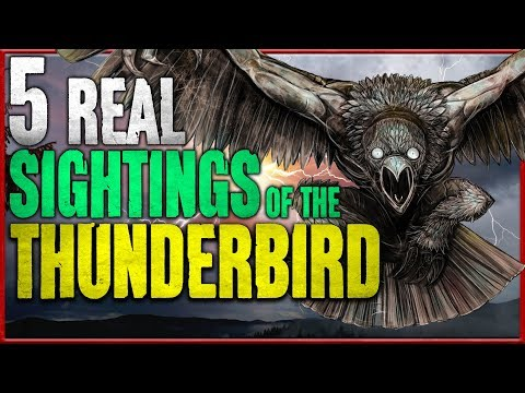 5 Real Thunderbird Sightings | Giant Monster Bird Sightings - Darkness Prevails