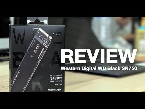 GamingDose Review :: รีวิว SSD Western Digital WD Black SN750