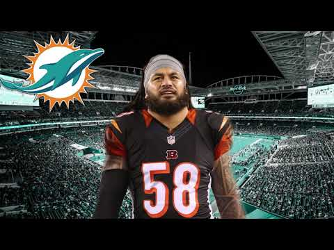 Miami Dolphins Sign Rey Maualuga