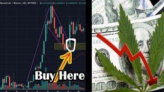 Profitable CRYPTO trading strategy. Weed stocks CRASH! Bitcoin UPDATE.