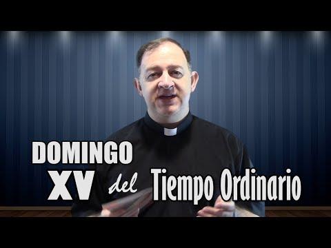 Domingo XV del Tiempo Ordinario (15 de julio de 2018) Elegidos para ser santos