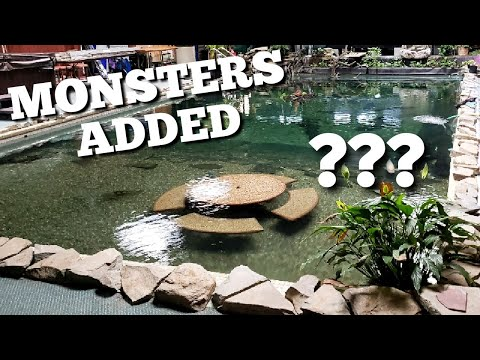 Monster Fish Added To The 58,000 Gallon Monster Pond