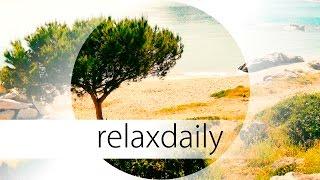 Soft & Peaceful Instrumental Music  light, calm  N°044 (4K)