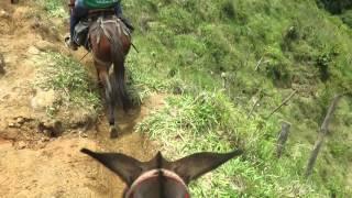 A caballo por Argelia, Colombia (5)