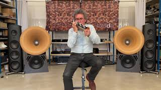 Magico M6 and M Basset playing together / The Godfather / accordina